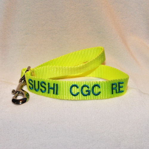 Personalized Custom Embroidered Dog Traffic Leash ...